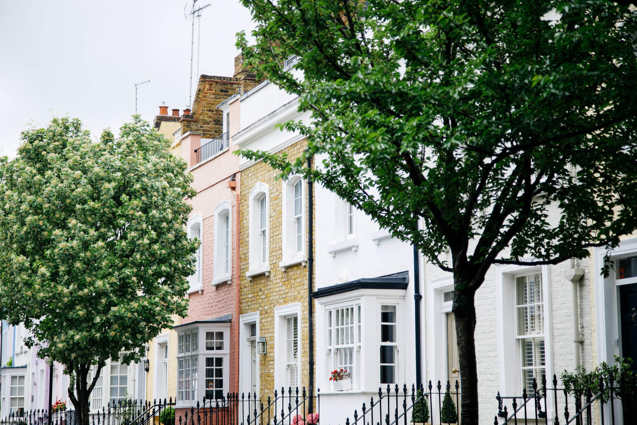No Fee Letting Agents